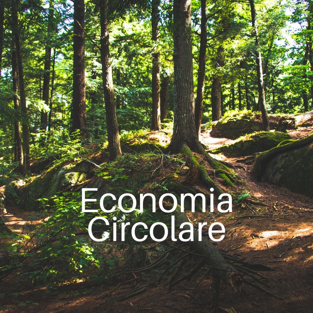 progetto-economia-circolare